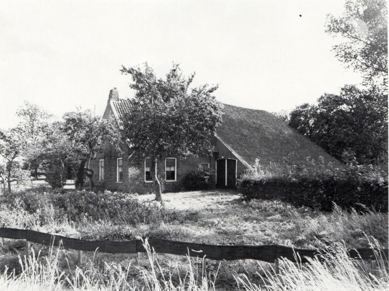 album_1902