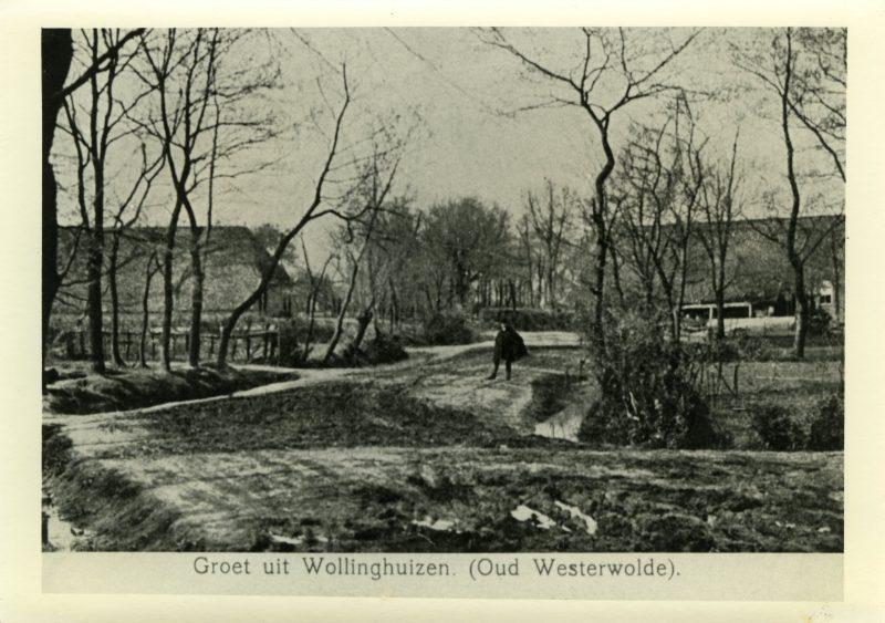 Wedde662