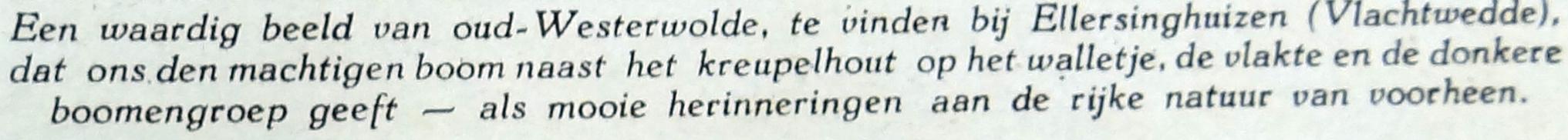 het Noorden in Woord en Beeld 21 maart 1930 eik Ellersinghuizen